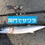 """<span class=""""title"""">【関門】激流ショアジギングで72cmサワラ</span>"""